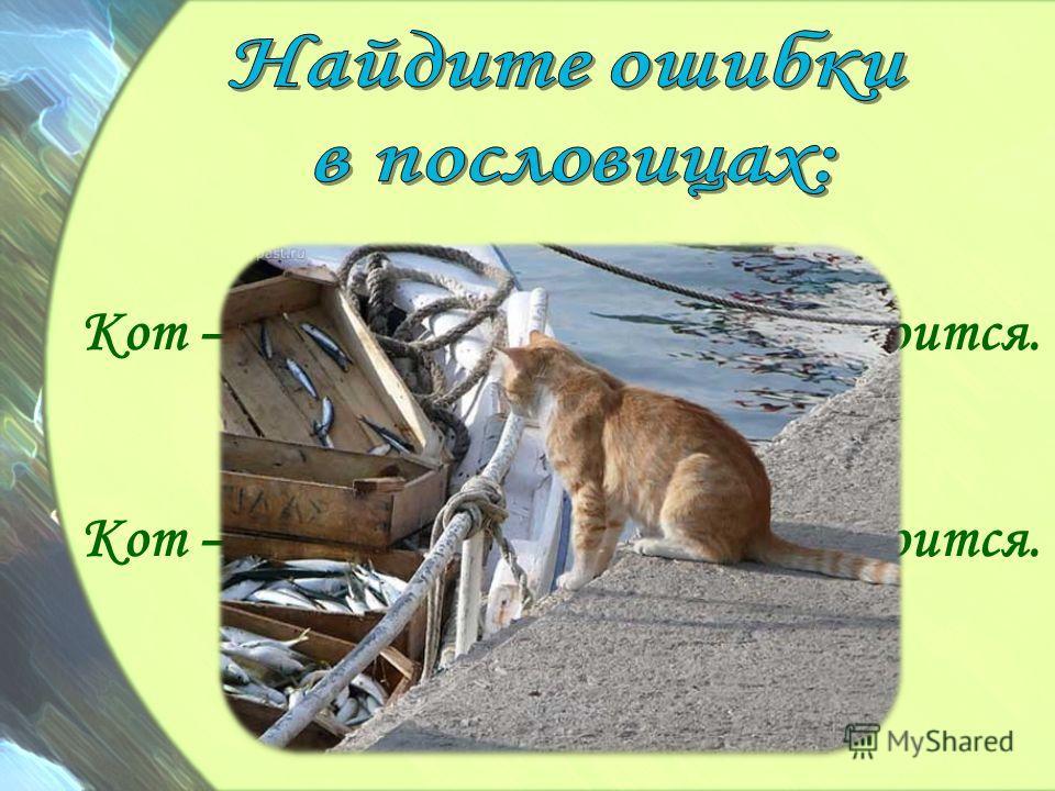 Кот – охотник до воды, да рыбы боится. Кот – охотник до рыбы, да воды боится.