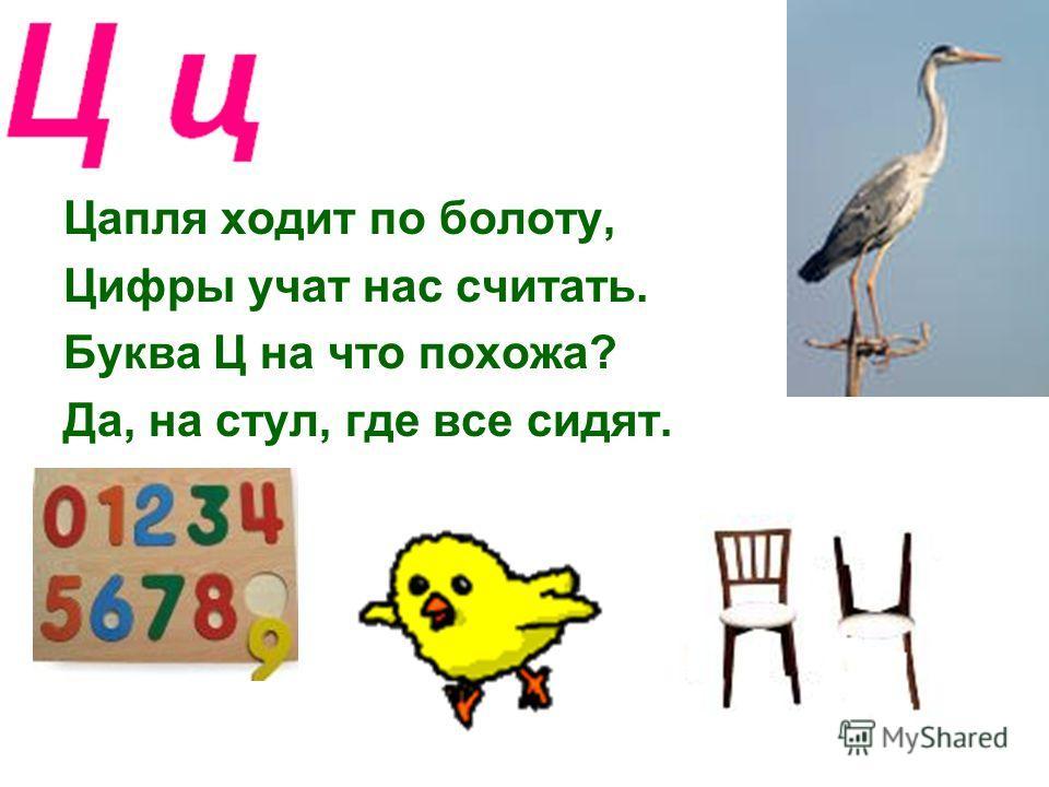 Цапля ходит по болоту, Цифры учат нас считать. Буква Ц на что похожа? Да, на стул, где все сидят.