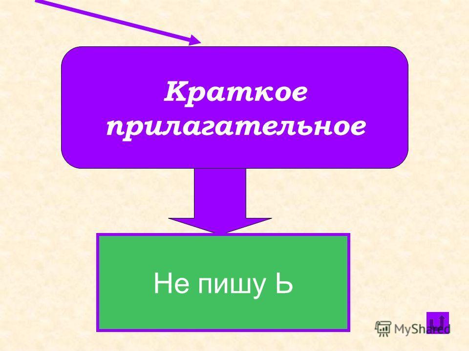 Глагол Пишу Ь