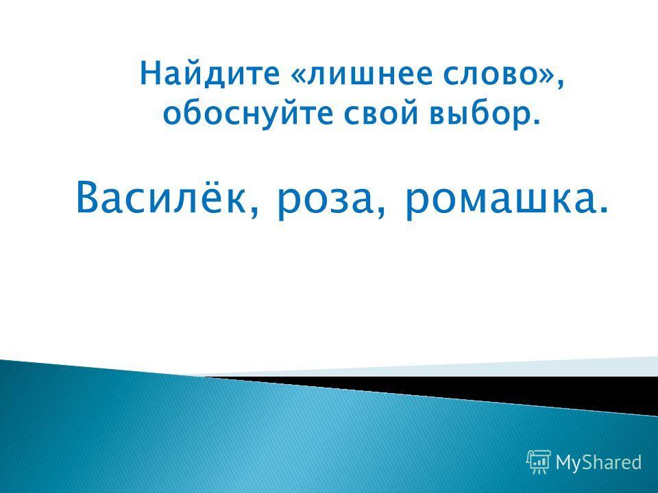 Найдите «лишнее слово», обоснуйте свой выбор. Василёк, роза, ромашка.