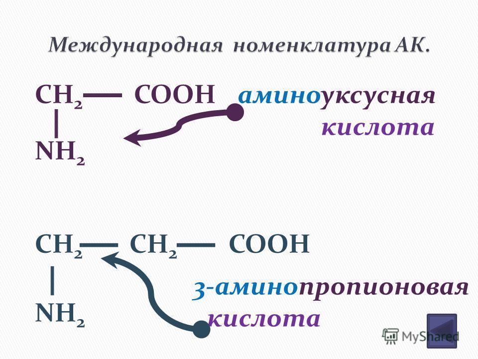 CH 2 COOH NH 2 CH 2 CH 2 COOH NH 2 аминоуксусная кислота 3-аминопропионовая кислота