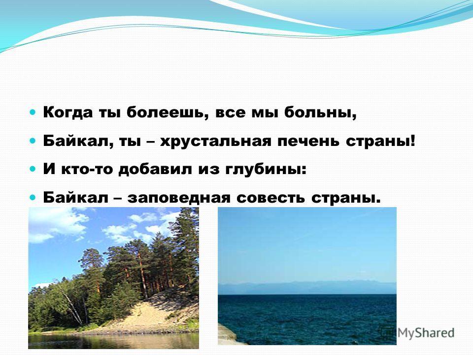 Когда ты болеешь, все мы больны, Байкал, ты – хрустальная печень страны! И кто-то добавил из глубины: Байкал – заповедная совесть страны.