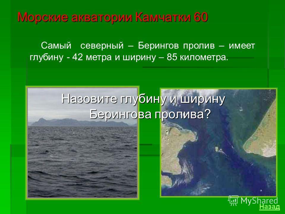 Морские акватории Камчатки 40 Средние глубины в Авачинской бухте составляют 10-20 м. Самое глубокое место находится напротив рыбацкого поселка Сероглазка, где глубины достигают 27 метров. Каковы средние глубины и где расположено самое глубокое место