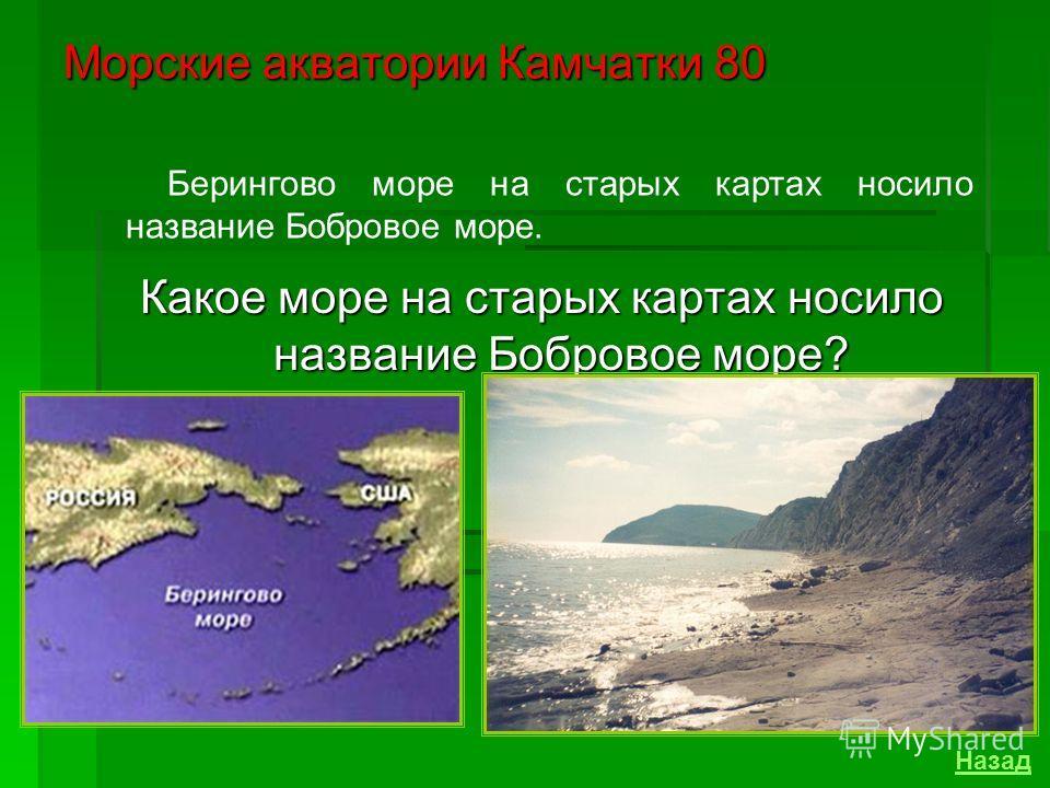 Самый северный – Берингов пролив – имеет глубину - 42 метра и ширину – 85 километра. Морские акватории Камчатки 60 Назовите глубину и ширину Берингова пролива? Назад