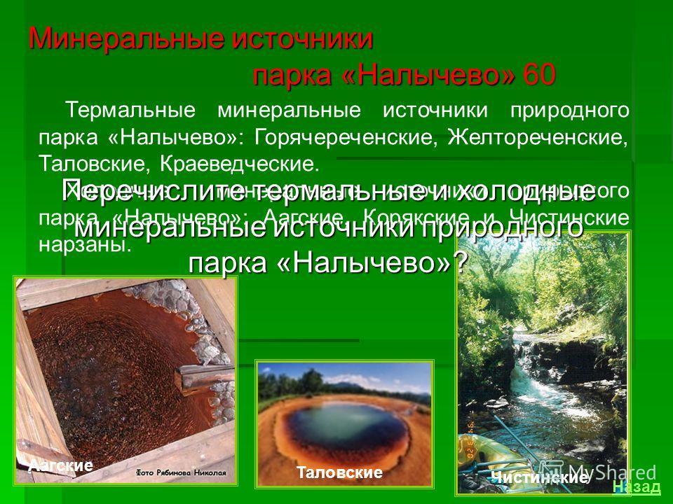 Вода с различными температурами собирается с Дзендзурского фумарольного поля в ручей, стекающий в воронку диаметром 10 метров, заполненную зеленоватой мутной водой. Через дно воронки выделяется газ (на 96% СО 2 ) с запахом сероводорода. Минеральные и