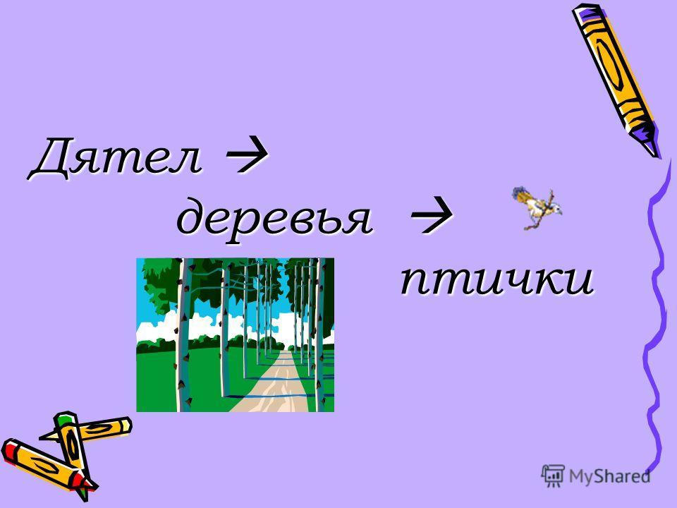 Дятел Дятел деревья деревья птички