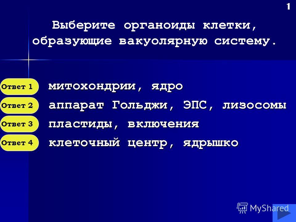 Вакуолярная система клетки Таймер Автор теста Танковид Илона Евгеньевна перед началом тестирования запускается таймер, нажатием на кнопку «Таймер» в нижней части экрана, который в конце определит время затраченное на тест. Внимательно читайте вопросы