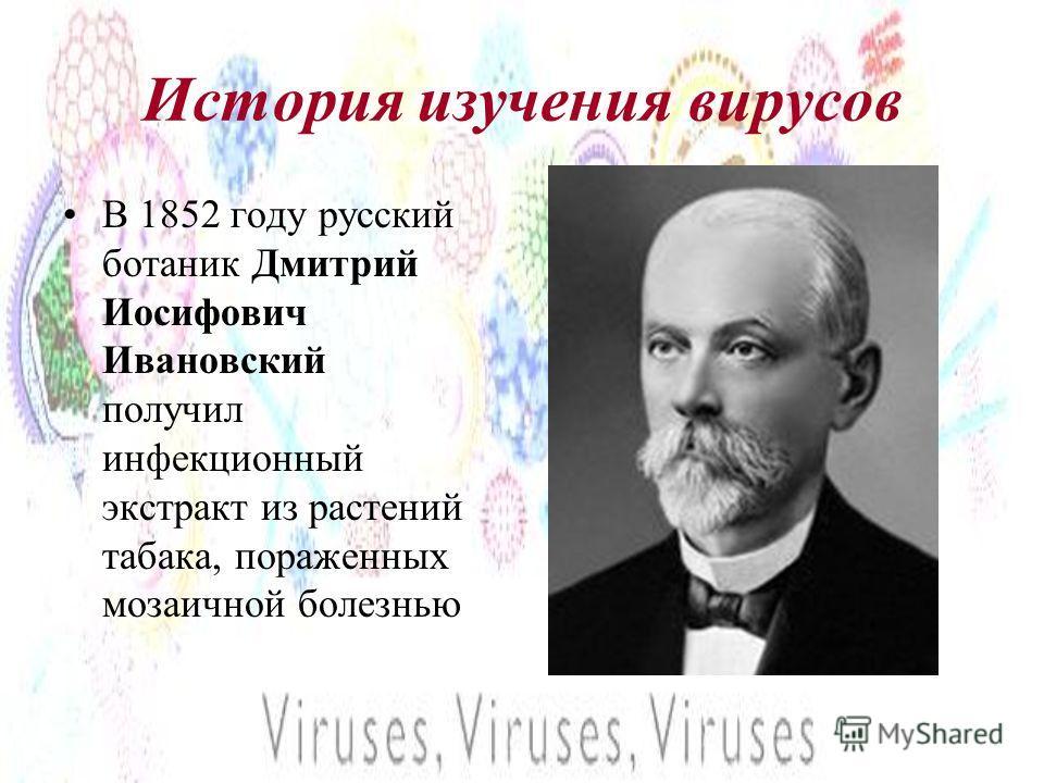 История изучения вирусов В 1852 году русский ботаник Дмитрий Иосифович Ивановский получил инфекционный экстракт из растений табака, пораженных мозаичной болезнью