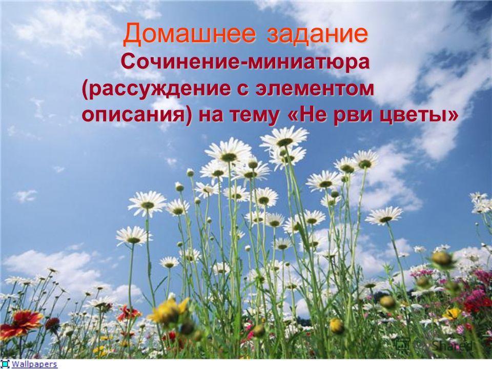 Домашнее задание Сочинение-миниатюра (рассуждение с элементом описания) на тему «Не рви цветы»