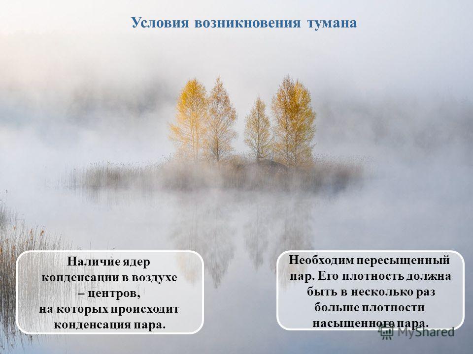 Условия возникновения тумана Наличие ядер конденсации в воздухе – центров, на которых происходит конденсация пара. Необходим пересыщенный пар. Его плотность должна быть в несколько раз больше плотности насыщенного пара.