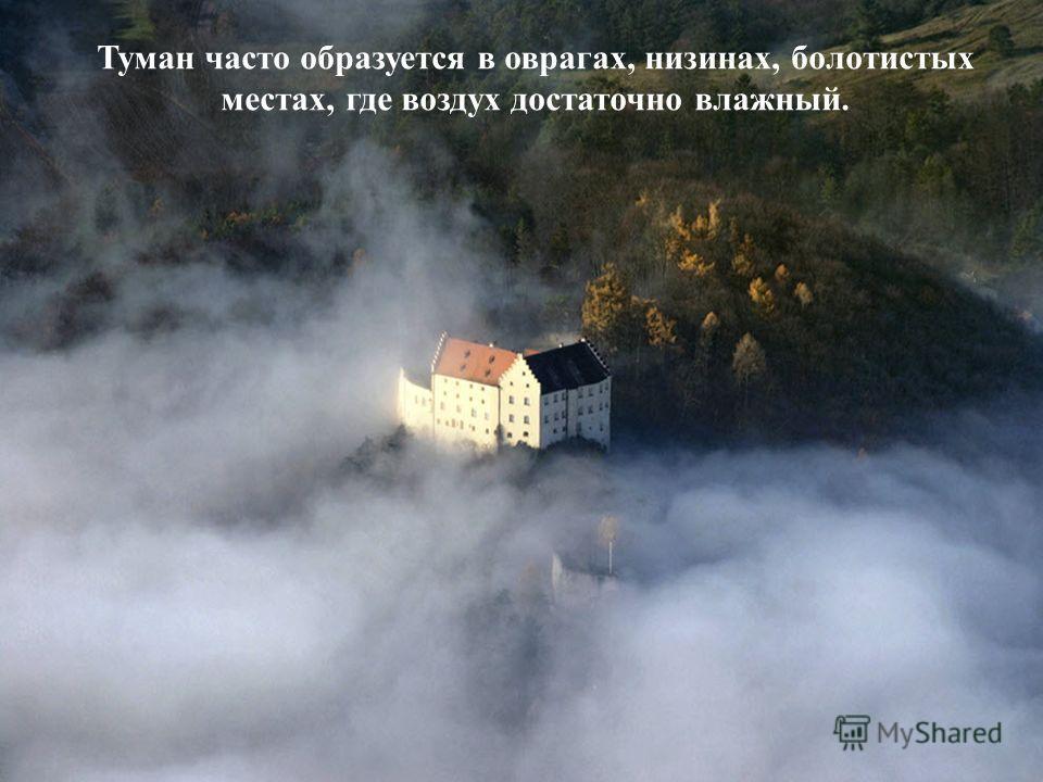 Туман часто образуется в оврагах, низинах, болотистых местах, где воздух достаточно влажный.
