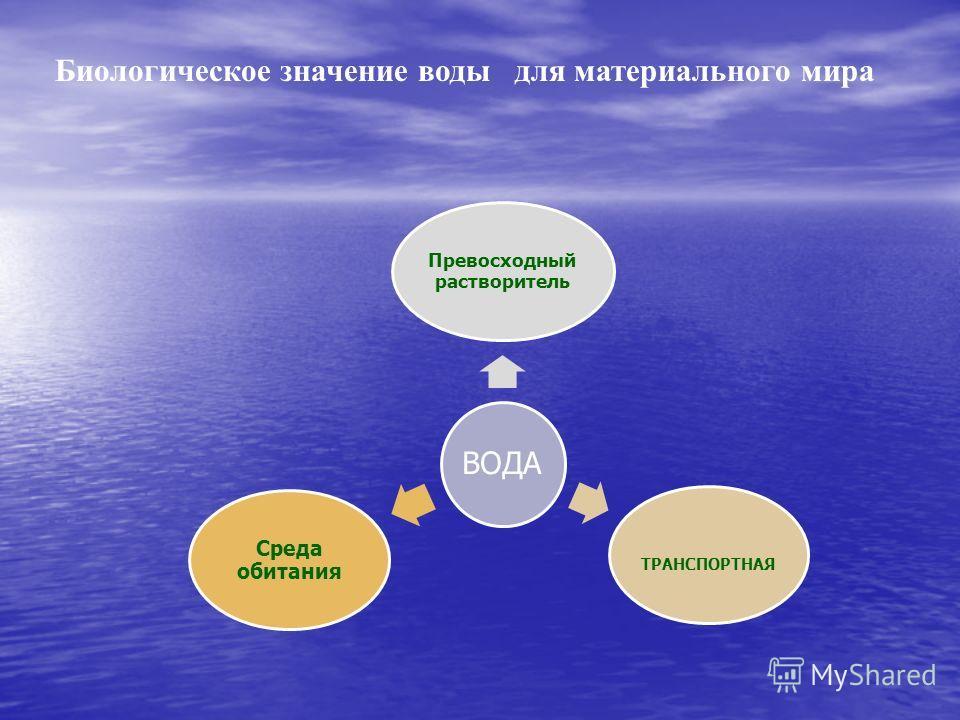 ВОДА Превосходный растворитель ТРАНСПОРТНАЯ Среда обитания Биологическое значение воды для материального мира