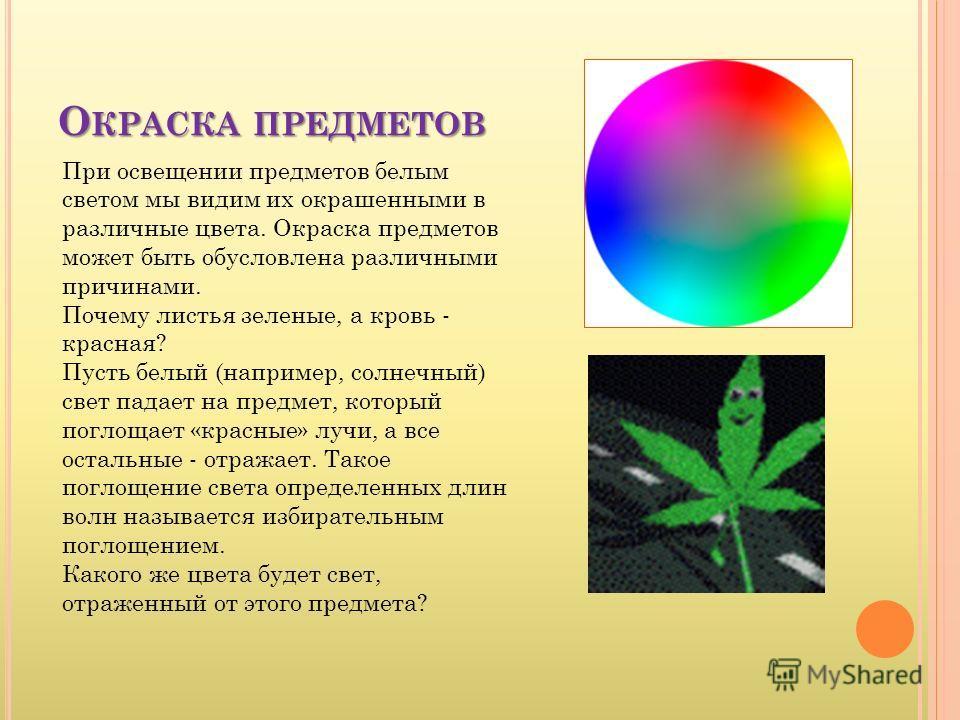 О КРАСКА ПРЕДМЕТОВ При освещении предметов белым светом мы видим их окрашенными в различные цвета. Окраска предметов может быть обусловлена различными причинами. Почему листья зеленые, а кровь - красная? Пусть белый (например, солнечный) свет падает