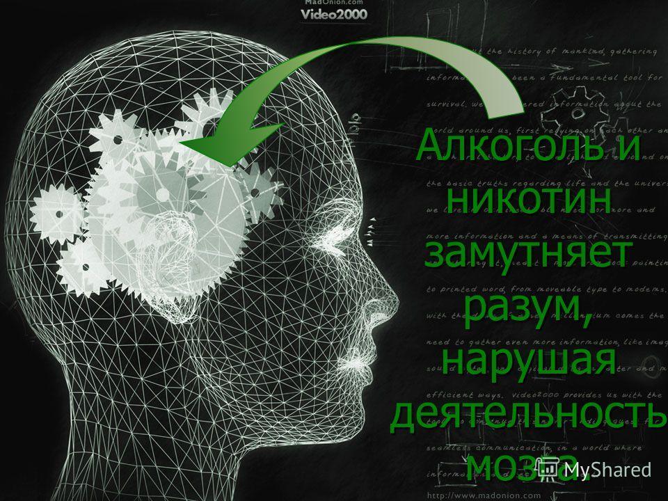 Алкоголь и никотин замутняет разум, нарушая деятельность мозга.