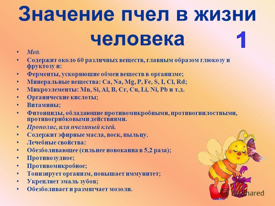 Значение пчел в жизни человека Мед. Содержит около 60 различных веществ, главным образом глюкозу и фруктозу и: Ферменты, ускоряющие обмен веществ в организме; Минеральные вещества: Ca, Na, Mg, P, Fe, S, I, Cl, Rd; Микроэлементы: Mn, Si, Al, B, Cr, Cu