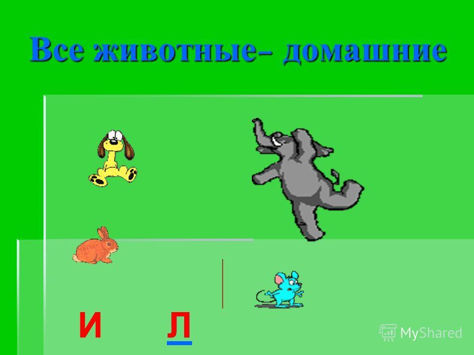 Все животные- домашние ИЛЛ