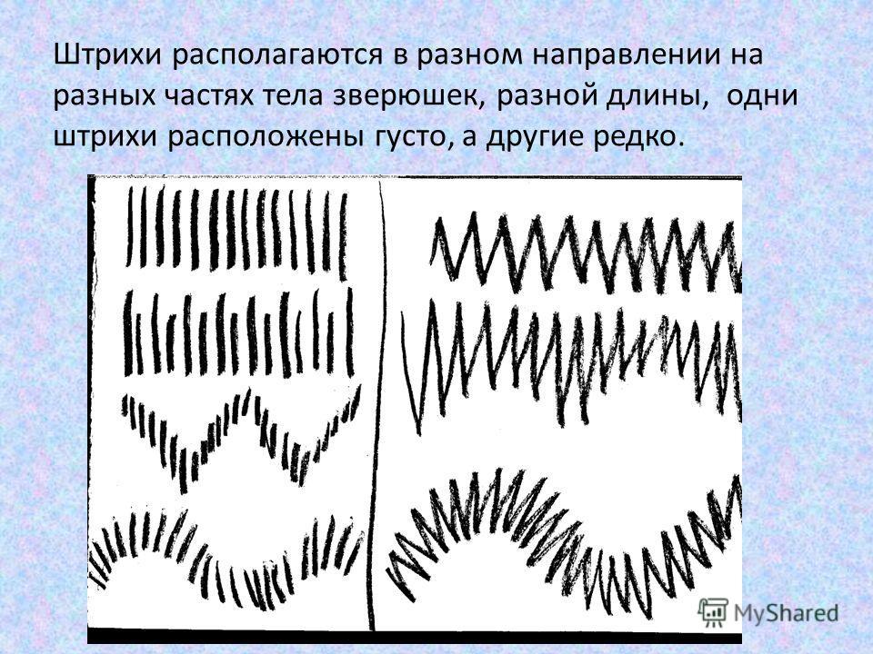 Штрихи располагаются в разном направлении на разных частях тела зверюшек, разной длины, одни штрихи расположены густо, а другие редко.