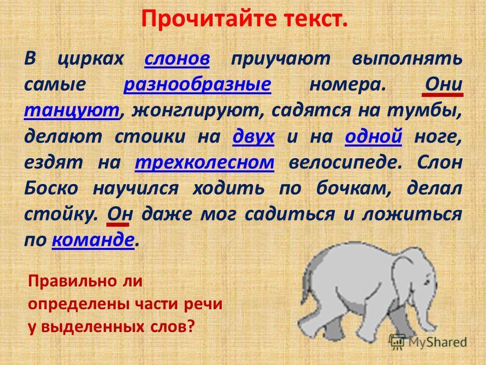 Прочитайте текст. В цирках слонов приучают выполнять самые разнообразные номера. Они танцуют, жонглируют, садятся на тумбы, делают стоики на двух и на одной ноге, ездят на трехколесном велосипеде. Слон Боско научился ходить по бочкам, делал стойку. О