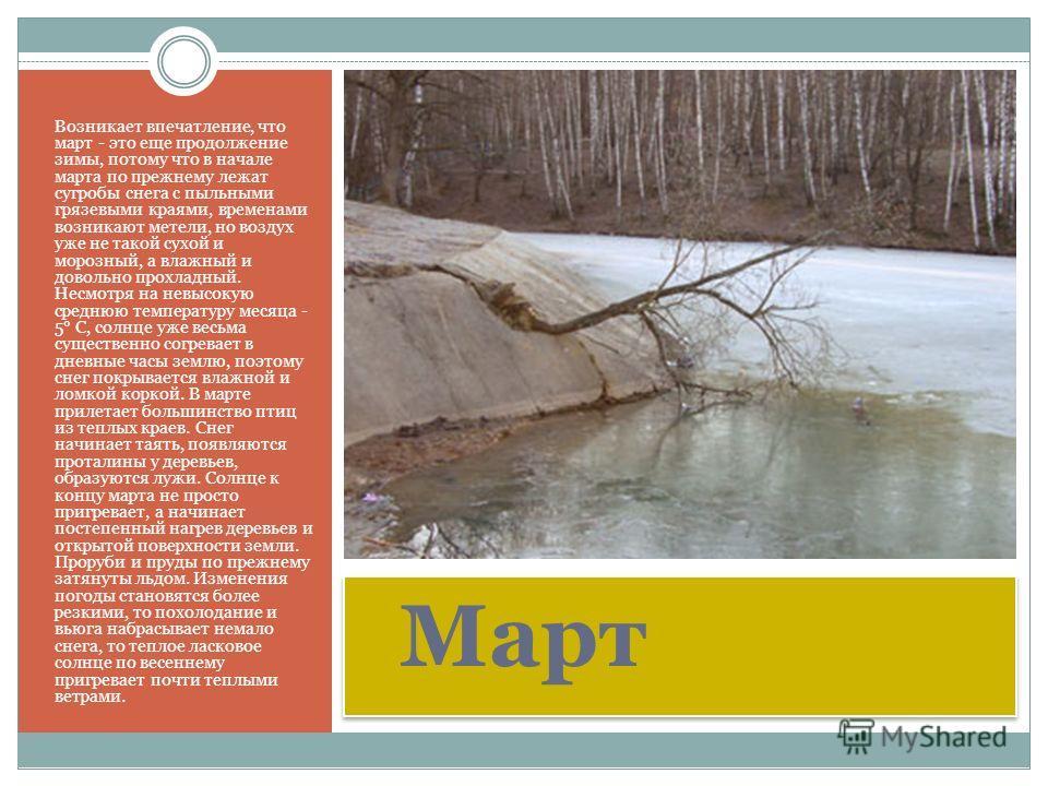 Март Возникает впечатление, что март - это еще продолжение зимы, потому что в начале марта по прежнему лежат сугробы снега с пыльными грязевыми краями, временами возникают метели, но воздух уже не такой сухой и морозный, а влажный и довольно прохладн