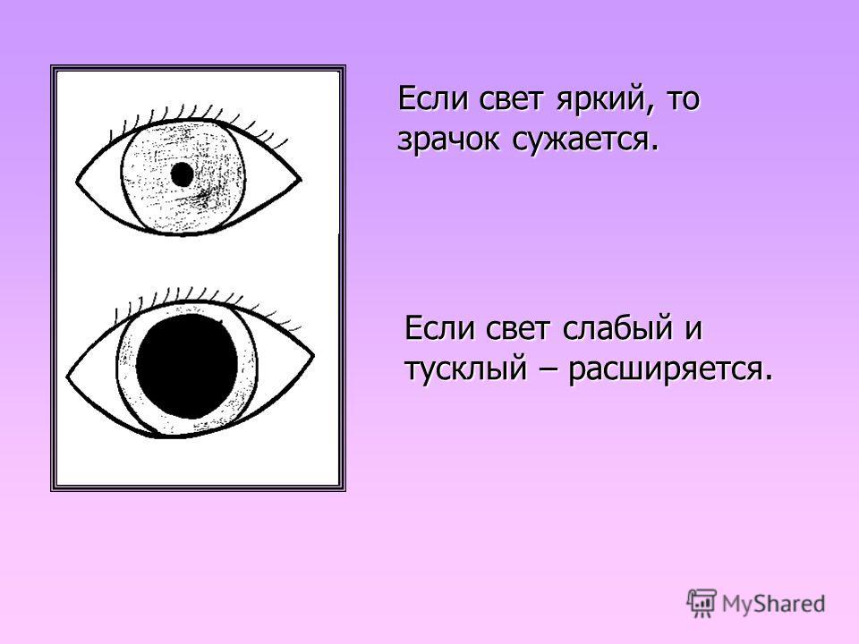 Если свет яркий, то зрачок сужается. Если свет слабый и тусклый – расширяется.