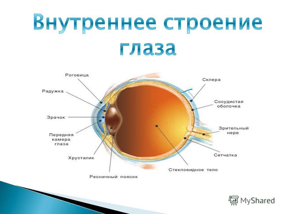 Хорошая клиника коррекции зрения