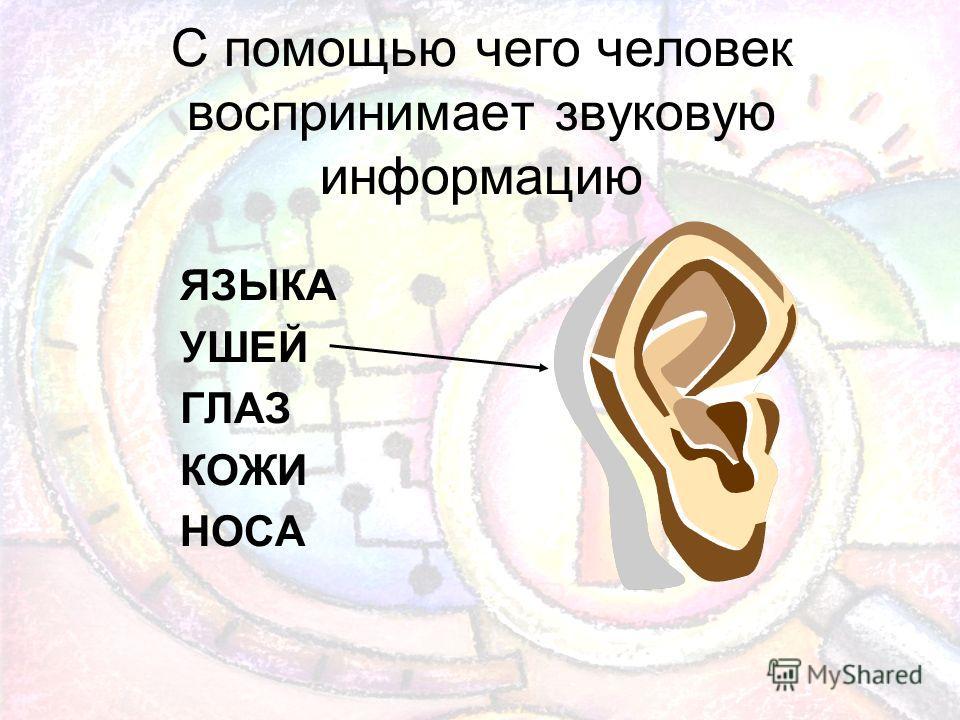 С помощью чего человек воспринимает звуковую информацию ЯЗЫКА УШЕЙ ГЛАЗ КОЖИ НОСА