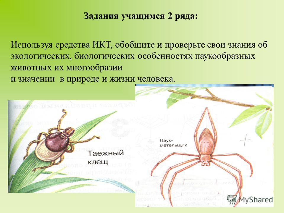 Задания учащимся 2 ряда: Используя средства ИКТ, обобщите и проверьте свои знания об экологических, биологических особенностях паукообразных животных их многообразии и значении в природе и жизни человека.