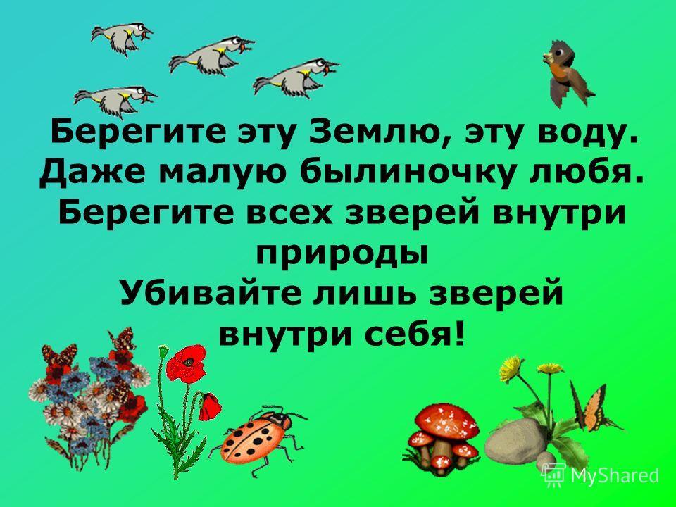 Берегите эту Землю, эту воду. Даже малую былиночку любя. Берегите всех зверей внутри природы Убивайте лишь зверей внутри себя!