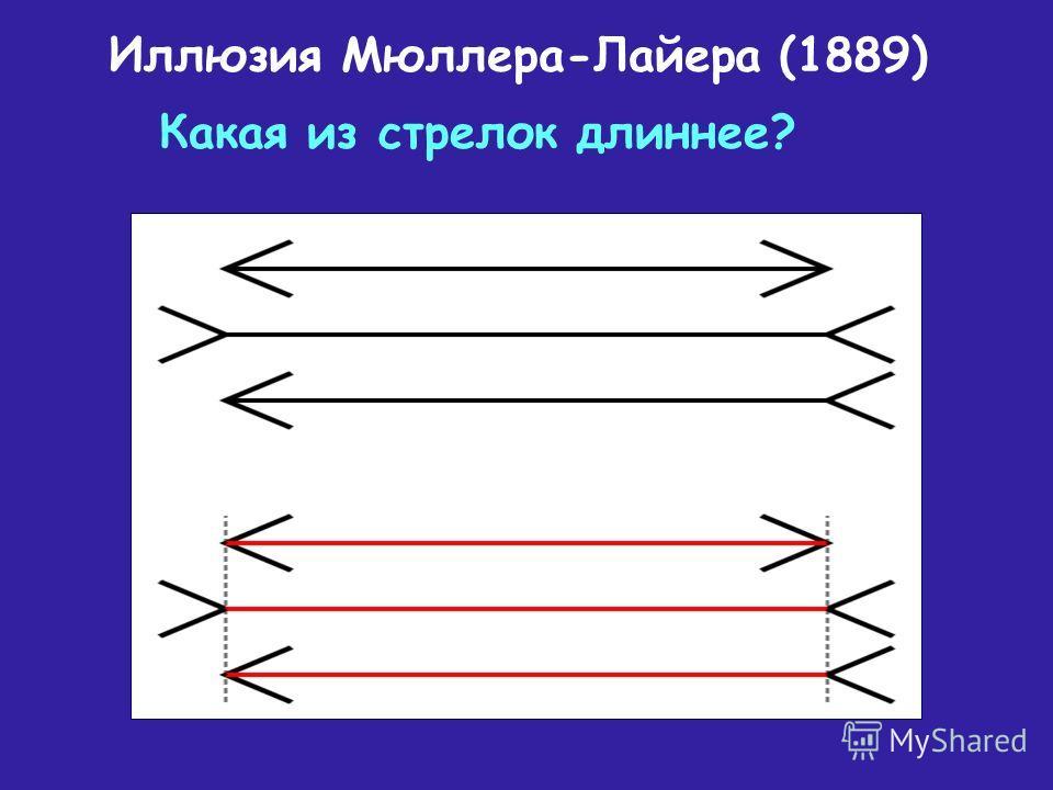 Иллюзия Мюллера-Лайера (1889) Какая из стрелок длиннее?