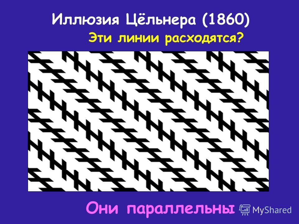 Иллюзия Цёльнера (1860) Эти линии расходятся? Они параллельны