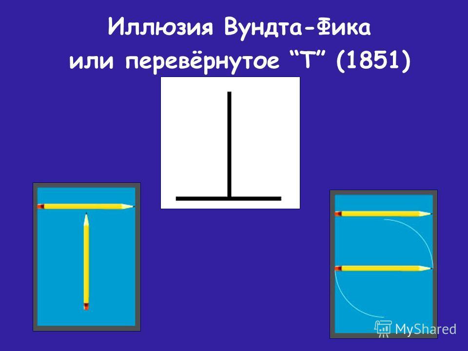 Иллюзия Вундта-Фика или перевёрнутое Т (1851)