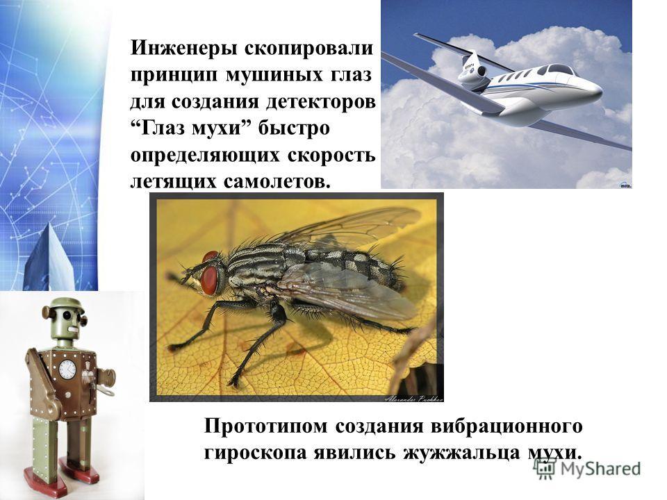 Прототипом создания вибрационного гироскопа явились жужжальца мухи. Инженеры скопировали принцип мушиных глаз для создания детекторовГлаз мухи быстро определяющих скорость летящих самолетов.