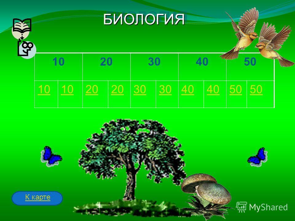 1020304050 10 20 30 40 50 БИОЛОГИЯБИОЛОГИЯ К карте