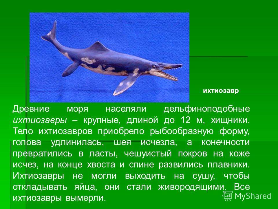 Древние моря населяли дельфиноподобные ихтиозавры – крупные, длиной до 12 м, хищники. Тело ихтиозавров приобрело рыбообразную форму, голова удлинилась, шея исчезла, а конечности превратились в ласты, чешуистый покров на коже исчез, на конце хвоста и