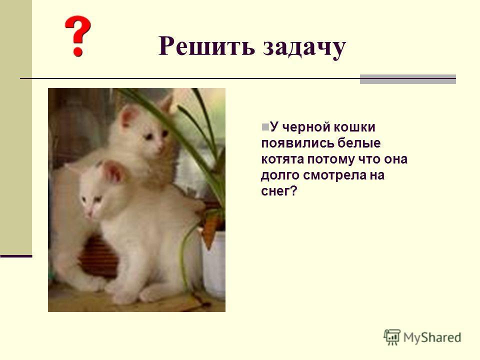 Решить задачу У черной кошки появились белые котята потому что она долго смотрела на снег?