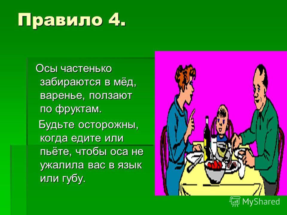 Правило 4. Осы частенько забираются в мёд, варенье, ползают по фруктам. Осы частенько забираются в мёд, варенье, ползают по фруктам. Будьте осторожны, когда едите или пьёте, чтобы оса не ужалила вас в язык или губу. Будьте осторожны, когда едите или