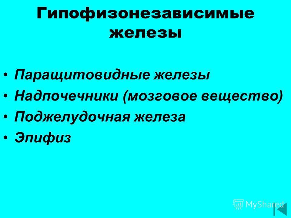 Гипофизонезависимые железы Паращитовидные железы Надпочечники (мозговое вещество) Поджелудочная железа Эпифиз