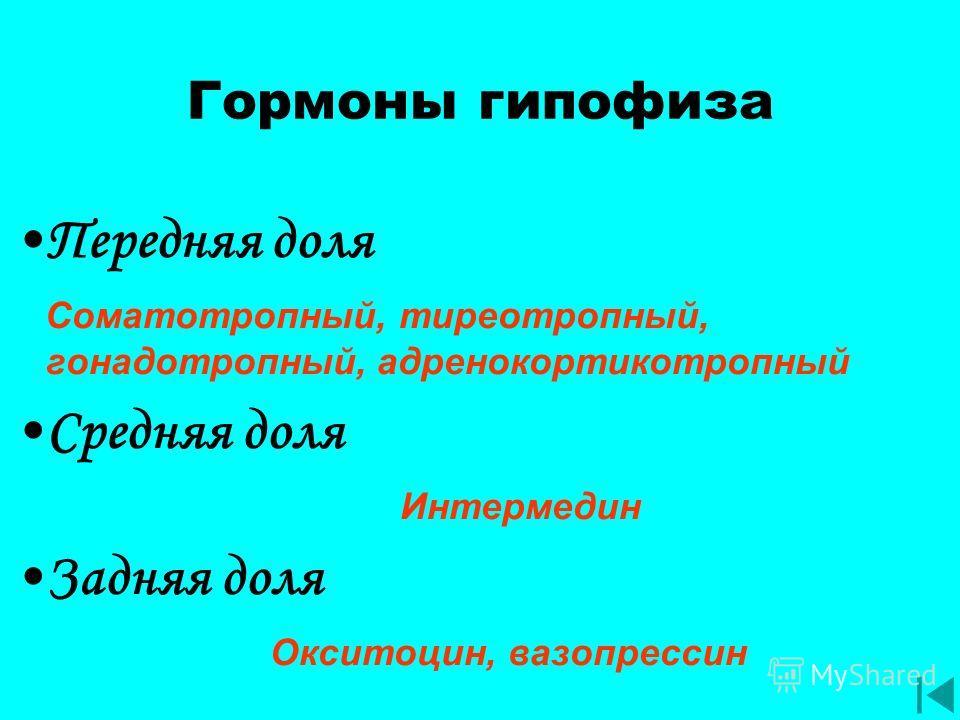 Гормоны гипофиза Передняя доля Соматотропный, тиреотропный, гонадотропный, адренокортикотропный Средняя доля Интермедин Задняя доля Окситоцин, вазопрессин