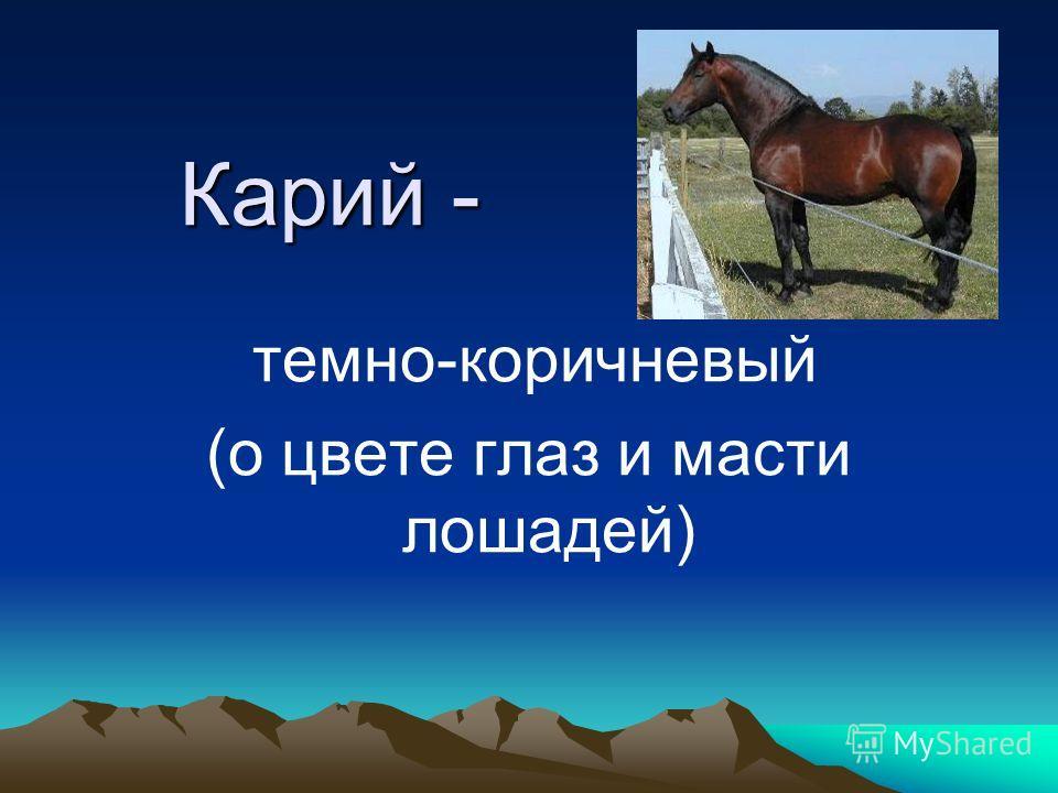 Карий - темно-коричневый (о цвете глаз и масти лошадей)
