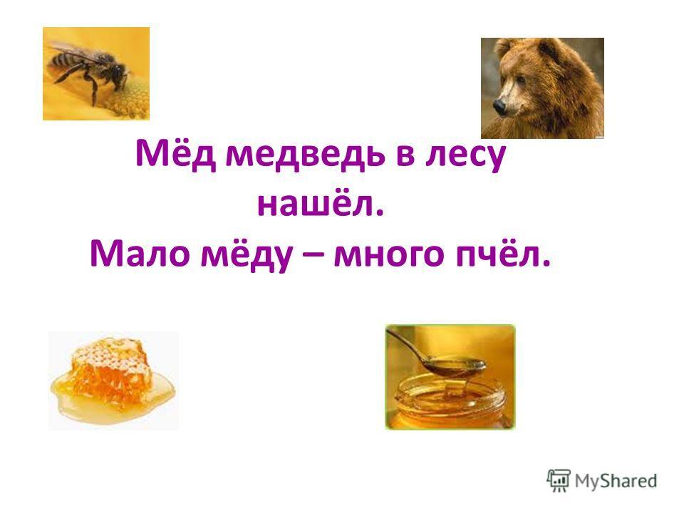 Мёд медведь в лесу нашёл. Мало мёду – много пчёл.