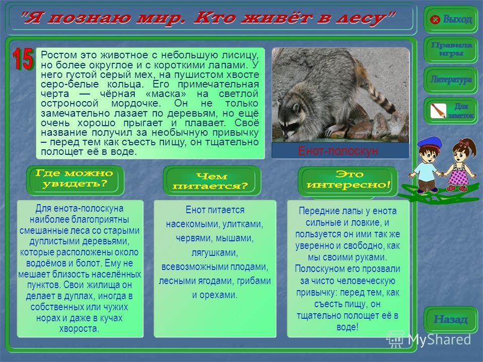 Кабан живёт в самых разнообразных местах – от хвойной тайги до тропических лесов – и в основном там, где для него есть хорошее укрытие: в лиственных и смешанных лесах, лугах и полях, в еловых чащах и на болотах. Для ухода за кожей ему необходимы гряз