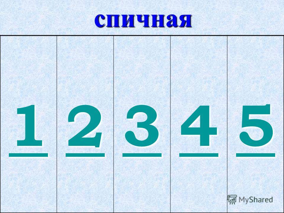 спичная 1111 2222 3333 4444 5555