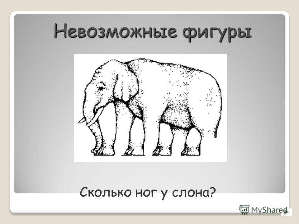 Невозможные фигуры Сколько ног у слона?