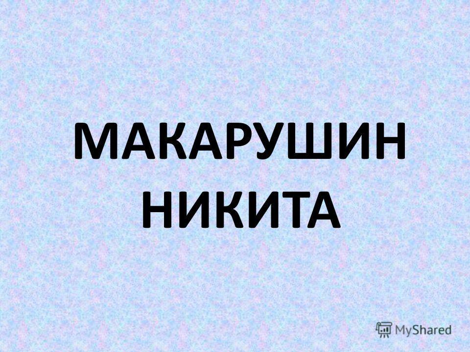 МАКАРУШИН НИКИТА