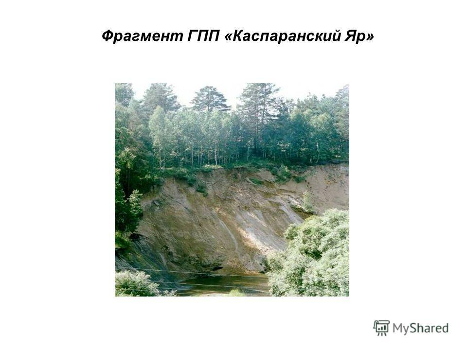 Фрагмент ГПП «Каспаранский Яр»