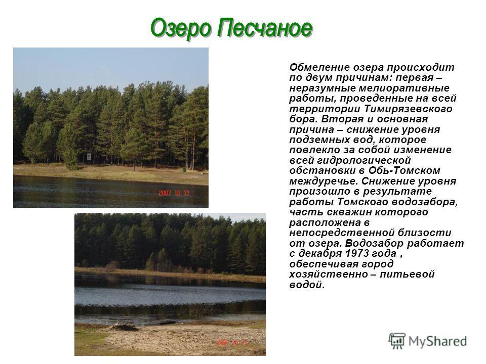Обмеление озера происходит по двум причинам: первая – неразумные мелиоративные работы, проведенные на всей территории Тимирязевского бора. Вторая и основная причина – снижение уровня подземных вод, которое повлекло за собой изменение всей гидрологиче