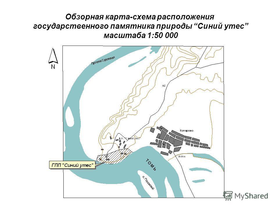 Обзорная карта-схема расположения государственного памятника природы Синий утес масштаба 1:50 000