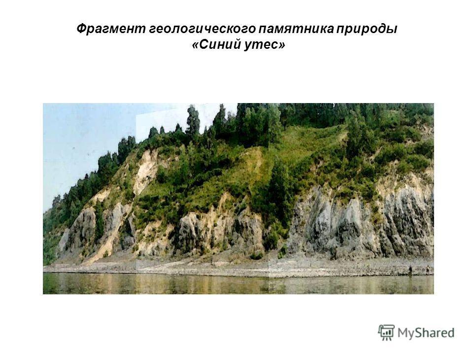 Фрагмент геологического памятника природы «Синий утес»