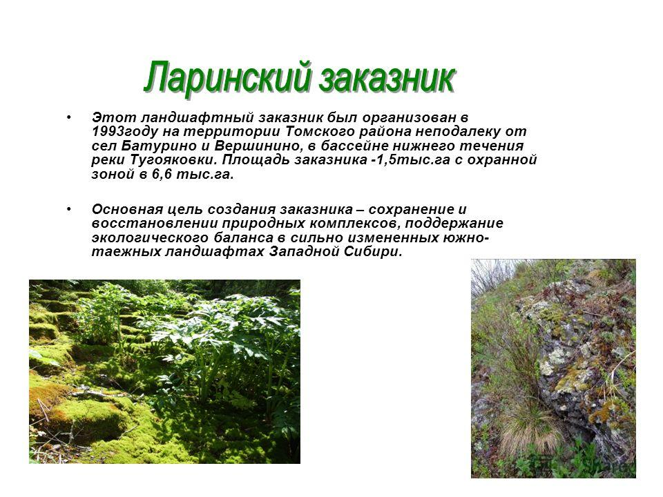 Этот ландшафтный заказник был организован в 1993году на территории Томского района неподалеку от сел Батурино и Вершинино, в бассейне нижнего течения реки Тугояковки. Площадь заказника -1,5тыс.га с охранной зоной в 6,6 тыс.га. Основная цель создания