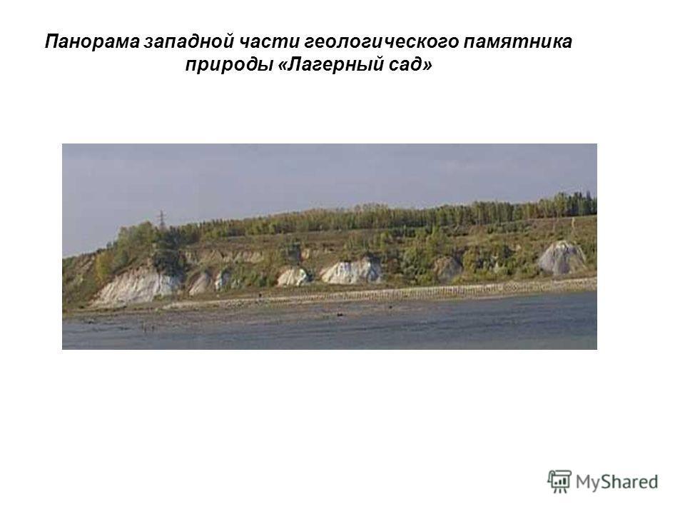 Панорама западной части геологического памятника природы «Лагерный сад»